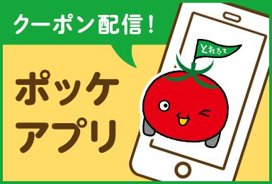 クーポン配信!ポッケアプリ