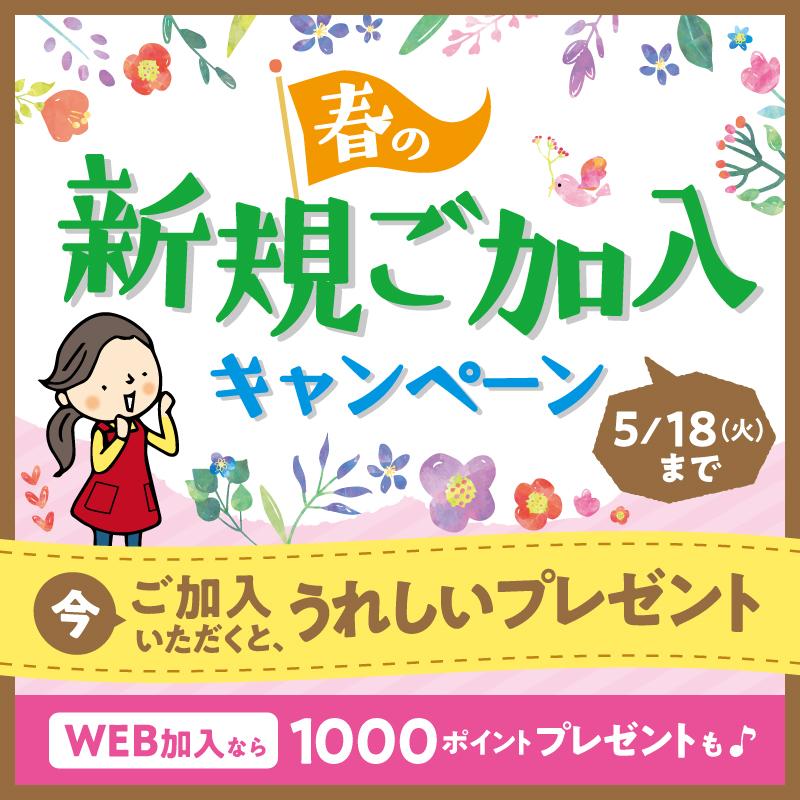 【お店】春の新規ご加入キャンペーンは5月18日まで♪Web加入限定の特典もあります。